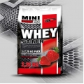 VISION Whey Gainer 2.25 kg
