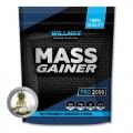 Wilmax mass gainer 2kg