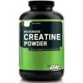 Optimum Nutrition Creatine Powder 600 gram (USA)